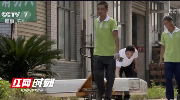 是什么吸引CCTV-7《绿色时空》栏目组走进海人竹床垫?