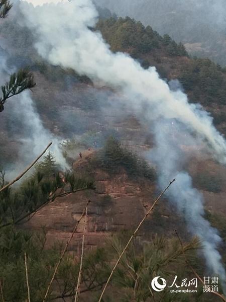 甘肃陇南成县发生森林火灾 森林
