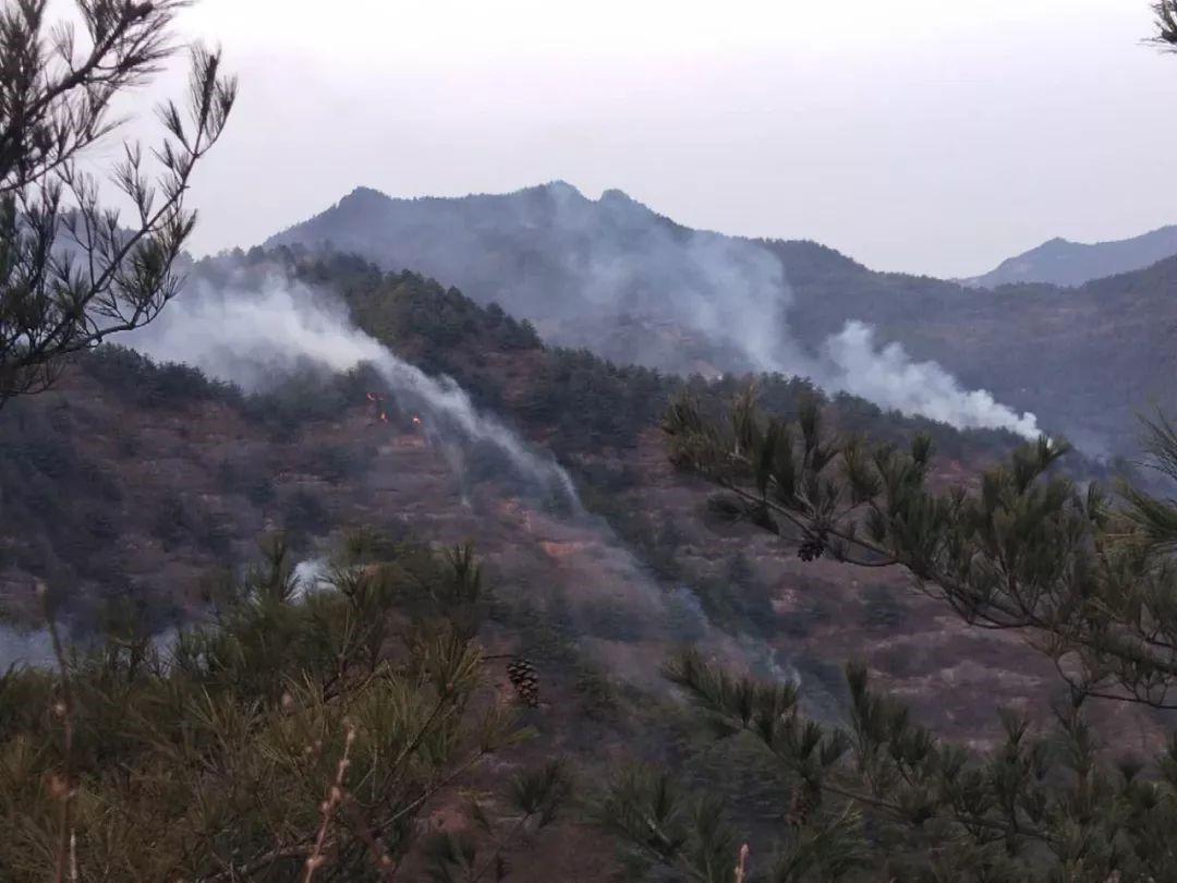 甘肃突发森林火灾 消防队伍紧急出动扑救