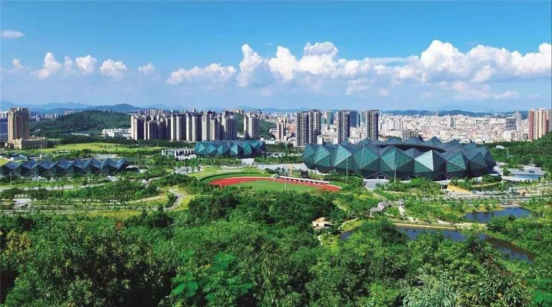 深圳:奋力夺取疫情防控和经济社会发展双胜利