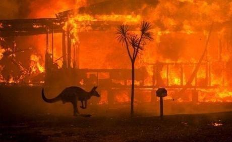 澳洲山火连烧5个多月,我国甘肃2