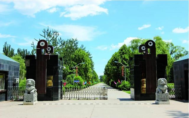北京八维教育
