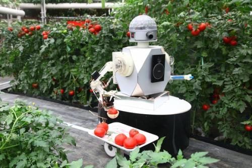"""农业机器人种类丰富,包括   大田作业机器人、温室机器人、林业农业机器人、畜牧农业机器人、水产农业机器人   """"智能化的农业农机装备为"""