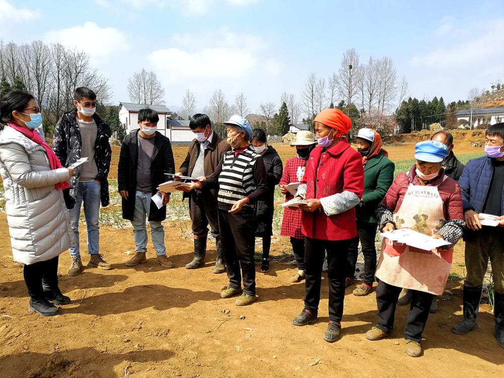 """贵州大学向威宁赠送1万张蔬菜技术""""明白卡""""助力春耕生产"""