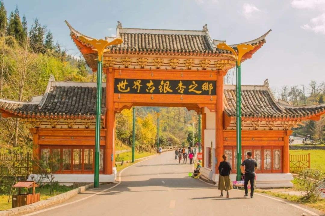 原创             贵州交通最牛的城市,有数十座火车站和3座高铁站,还是银杏之乡