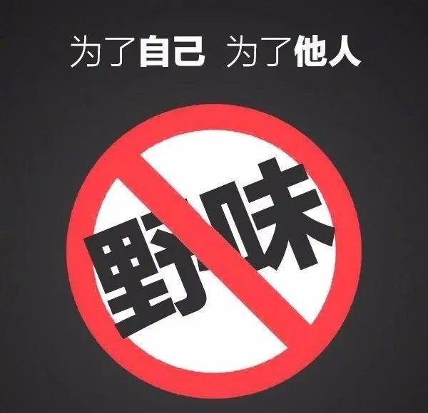 """全面禁止非法野生动物交易法案今日起生效 禁食""""野味""""刻不容缓"""