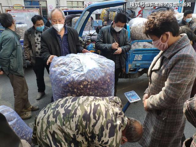 西峡县:抗疫助农 3小时售57万香菇