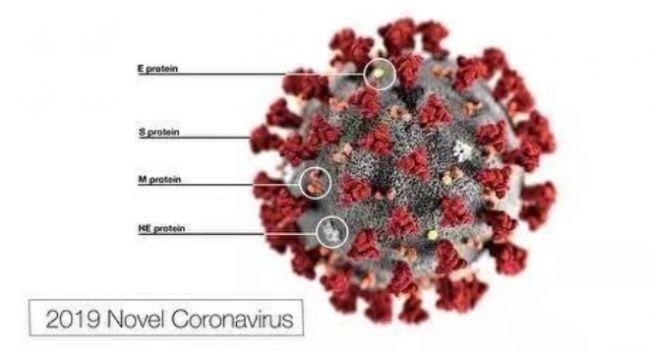 新冠肺炎患者出院后会不会再感染?专家分析个案原因