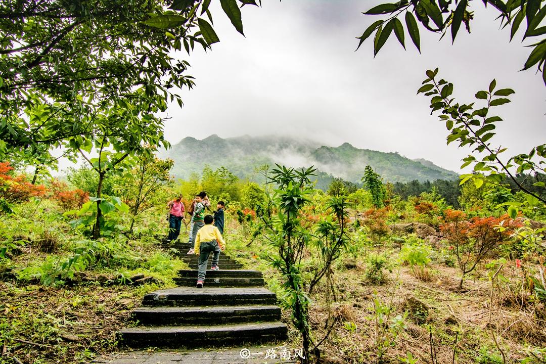 原创             广东最惊险的登山道就在这里,近90度天梯让人望而生畏