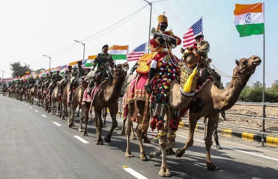 赶猴子 骑骆驼 修墙 灌水除臭!印度为了迎接特朗普 拼了......