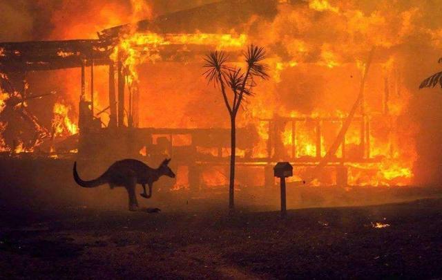 """大火刚扑灭,澳大利亚又遭""""天打雷劈"""",百万道闪电狂劈悉尼"""