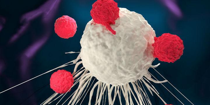 【国内首个CAR-T细胞治疗产品上市申请获受理 用于治疗淋巴瘤成人患者】T 细胞