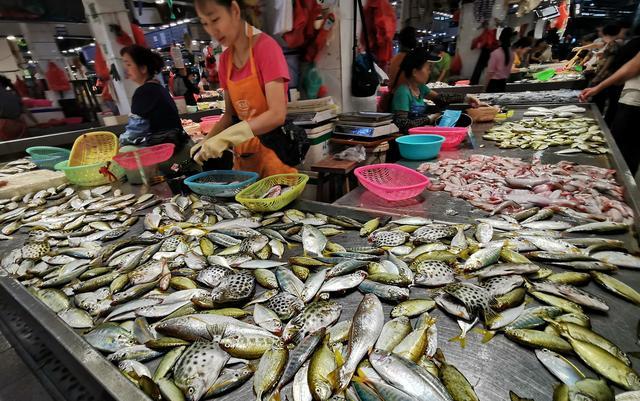 原创             海岸线自驾D2:走进广西,凭祥看边贸银滩戏大海,但吃海鲜要谨慎
