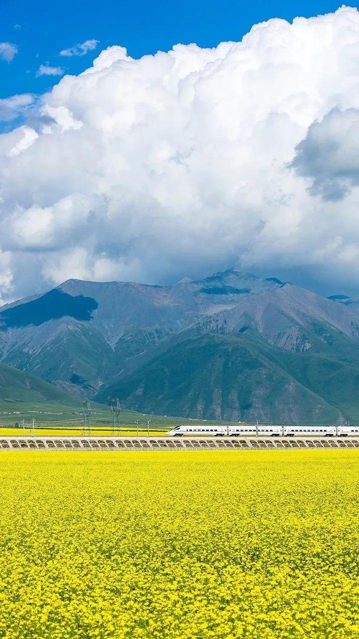 中国西部最低调的省份正式清0!它的美,全国人民都羡慕死了!