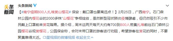 南宁疫期800人扎堆赏山?;?网友:只能说一句胡闹!