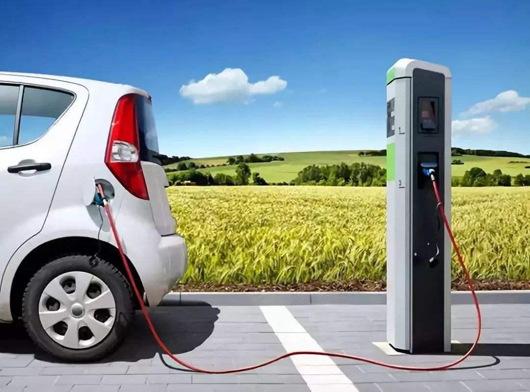 这些电动汽车不值得花钱