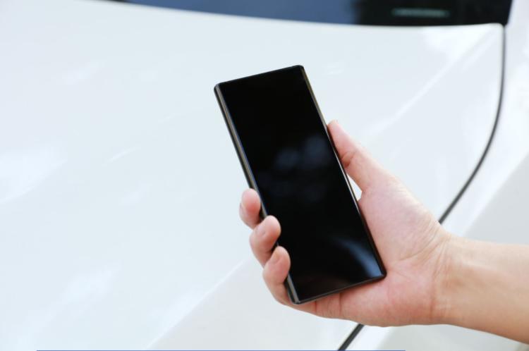 激進的APEX 2020與手機不遠的將來