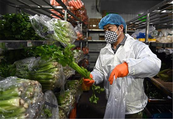 内蒙古呼和浩特:果蔬网络直销变身市场新宠