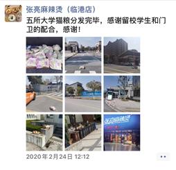 """猫人董事长_临港护猫人程老板:""""我只是暂时接过同学们的接力棒,做点小事情."""""""