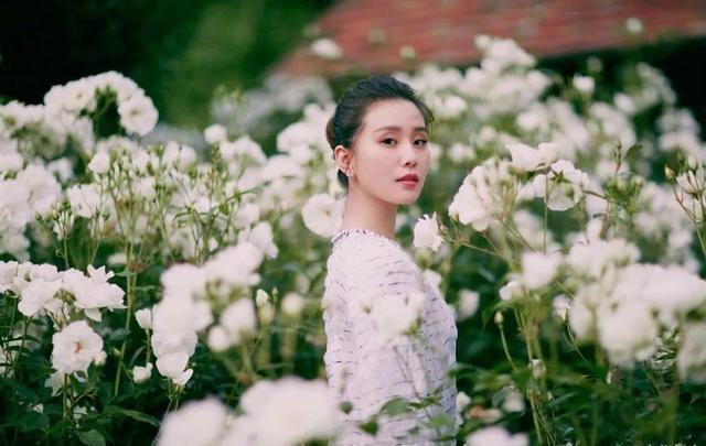85后小花电视剧收视率排行:杨幂赵丽颖上榜,佟丽娅逆袭让人意外