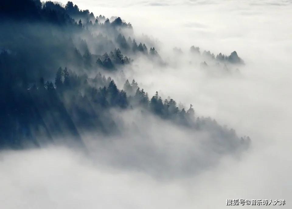 大洋詩歌:你躲在森林,躲在遠方,躲在我夢鄉