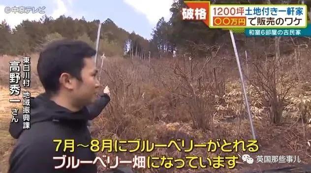 日本乡下9000块买房,有房有地有山林,看得让人很心动啊