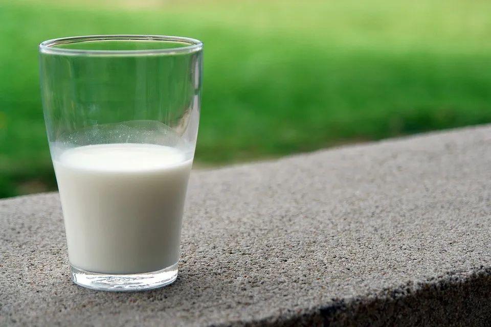 """牛奶含激素可致癌?辟谣!2个妙招,补充天然""""胰岛素"""",舒缓皮肤~"""
