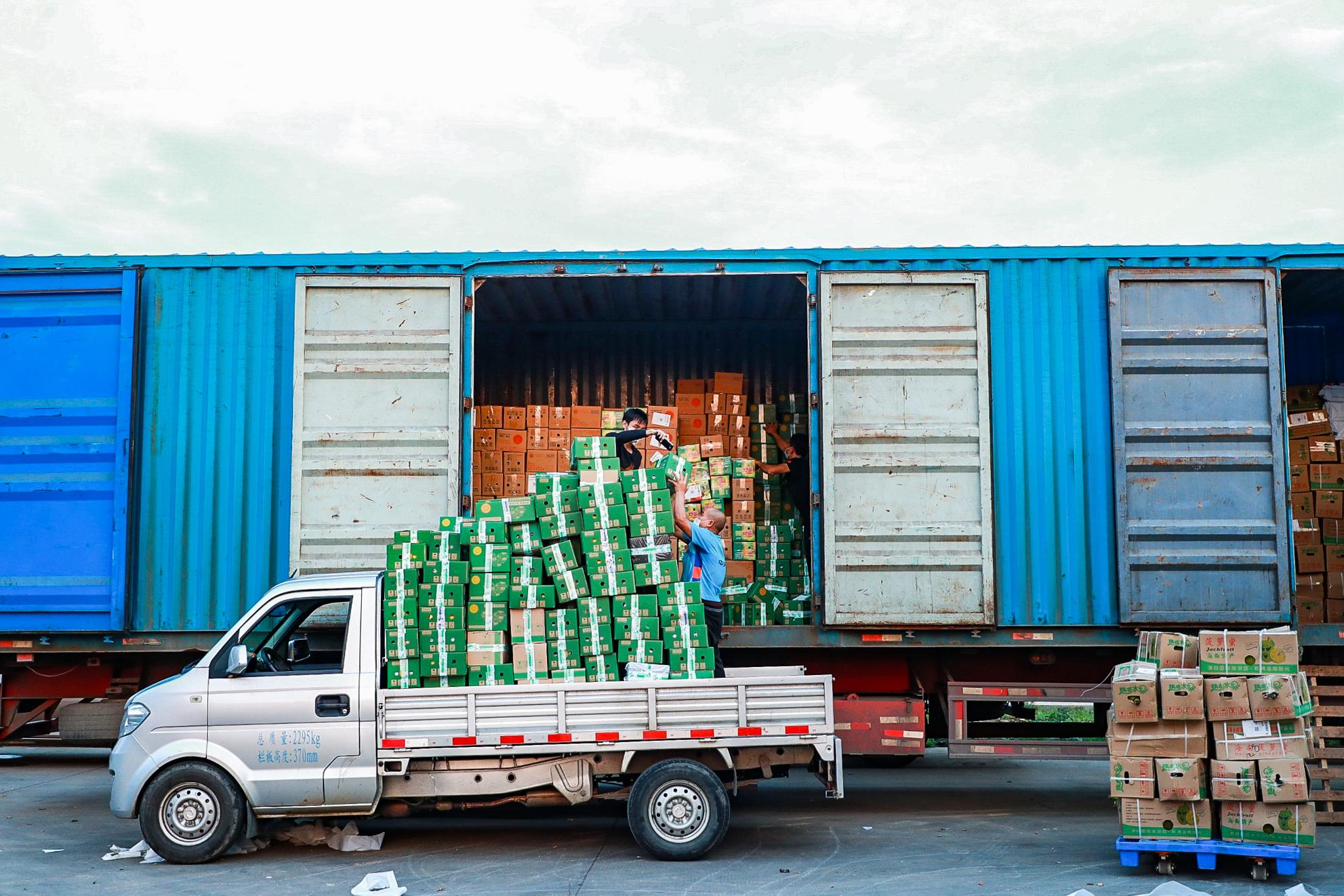 """""""造血式助農""""帶動農貨爆發!海南滯銷農產品在淘寶上賣出超1萬噸!"""