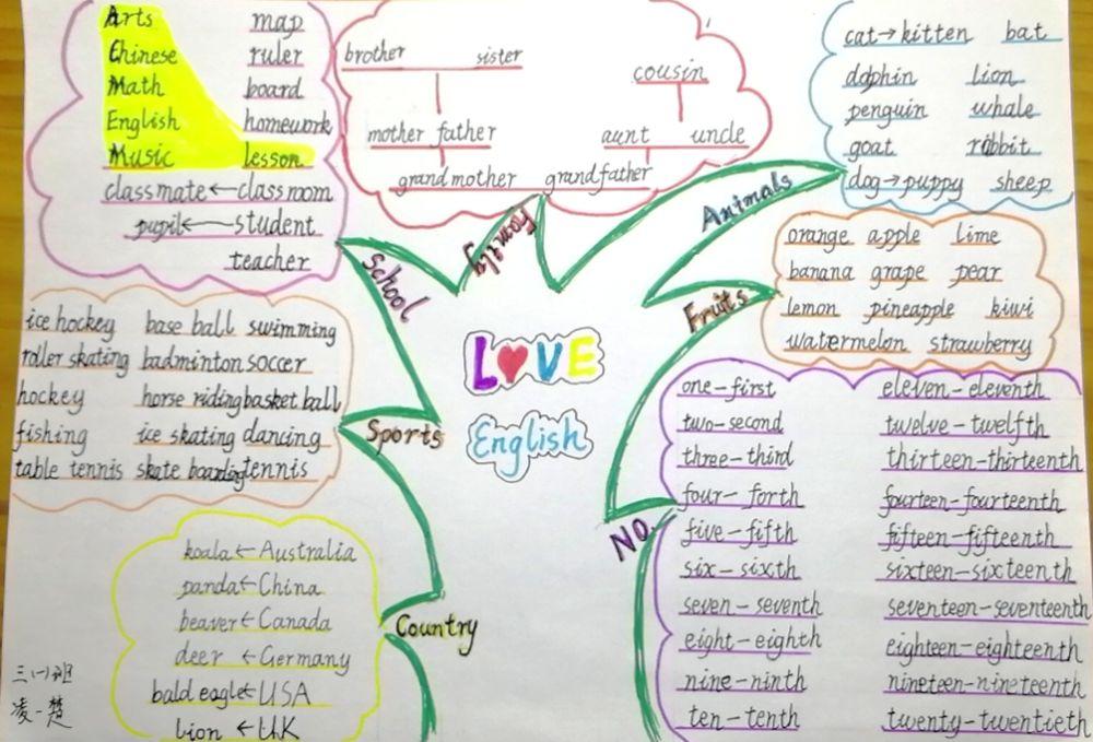发散思维,聪明学习 三年级英语 一起来画思维导图 学科活动