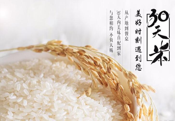 """我國""""低鎘稻""""種植技術條件成熟,""""慕施""""高端大米積極參與學習"""