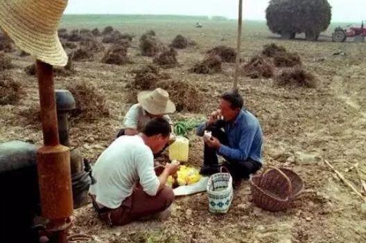 """誰說""""農業很土很苦"""",來看看它的另一面......"""