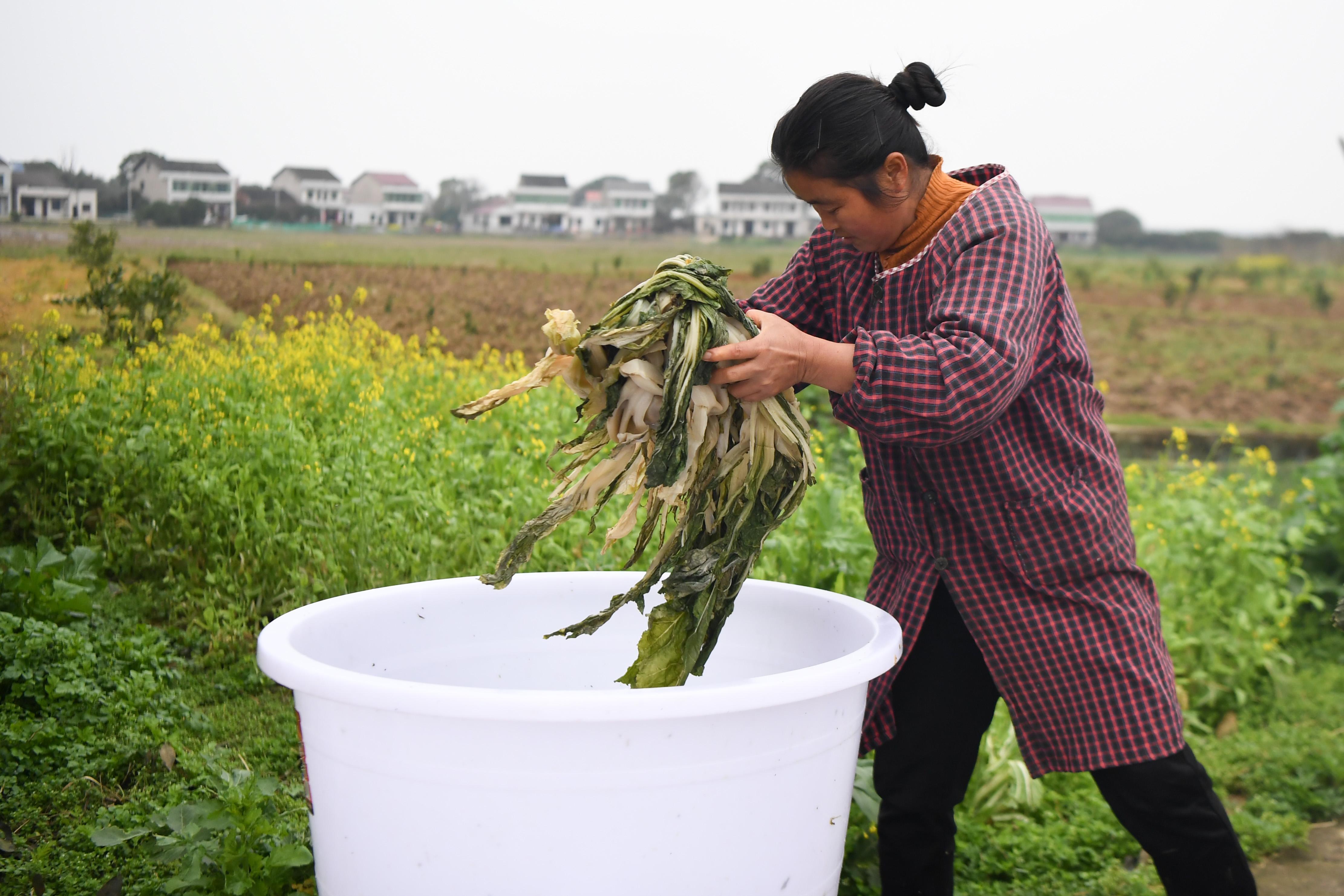 湖南益阳:拓宽销售渠道助力扶贫产业