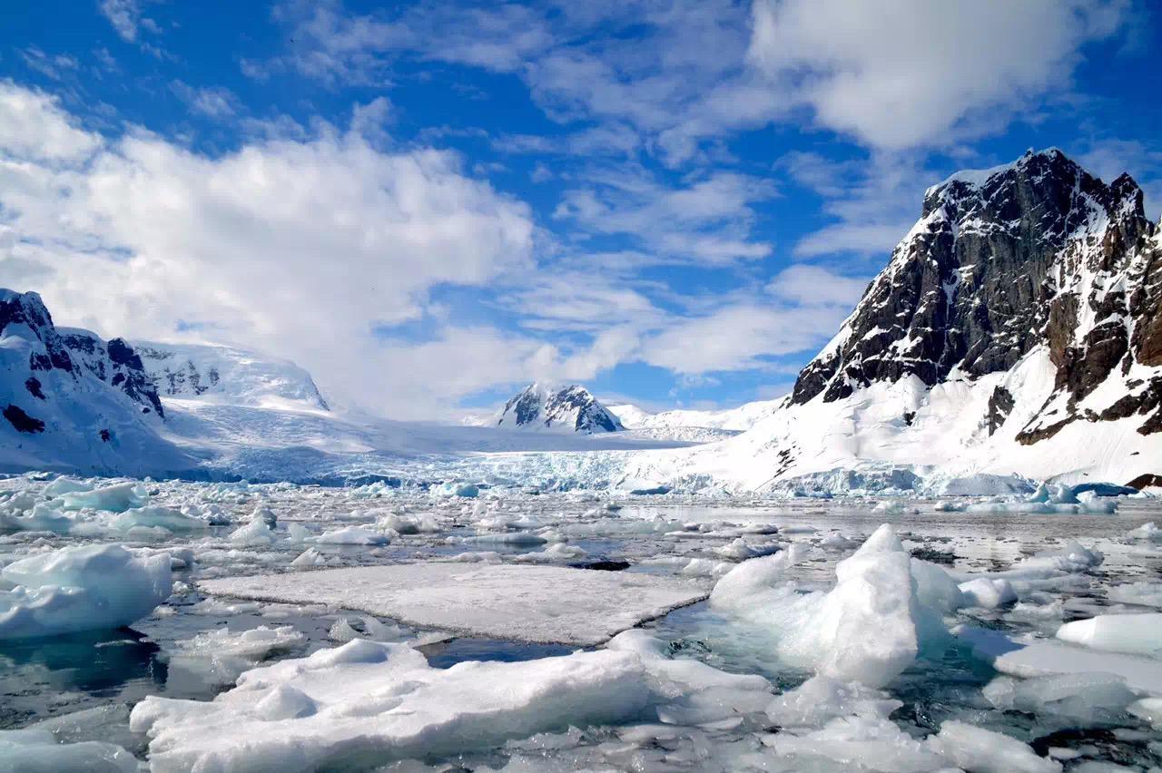 北极熊40年后灭绝?南极将会瓦解?我们到底会失去什么?