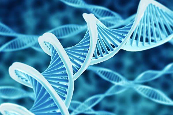 基因检测为什么被叫停 肺癌为什么要做基因检测?