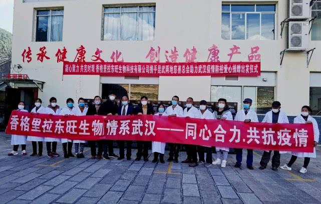 香格里拉东旺生物科技携手昆明武汉两地慈善总会,助力武汉疫情防控插图(12)