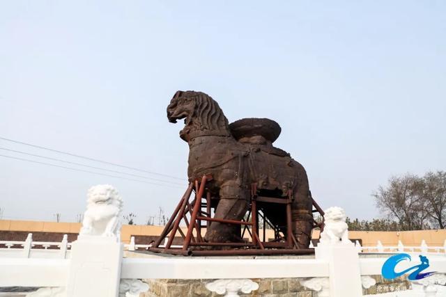 关于沧州这只 铁狮子 的传说,你听过吗