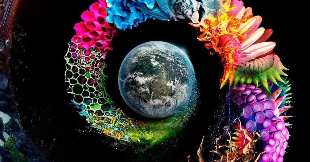 【学习资源】全球45部最佳纪录片,关于人类、世界、地球(强烈建议收藏)