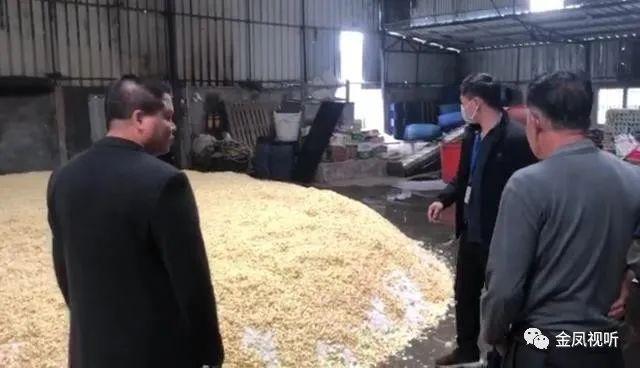 恶心!揭阳查处一冬菜腌制厂,现场环境不堪入目!
