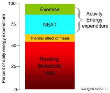 最减肥的运动方式图片