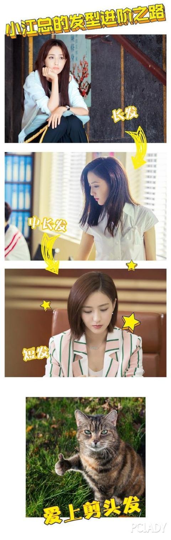 pc酱不得不夸赞饰演江达琳的佟丽娅,真的太适合剪短发了!