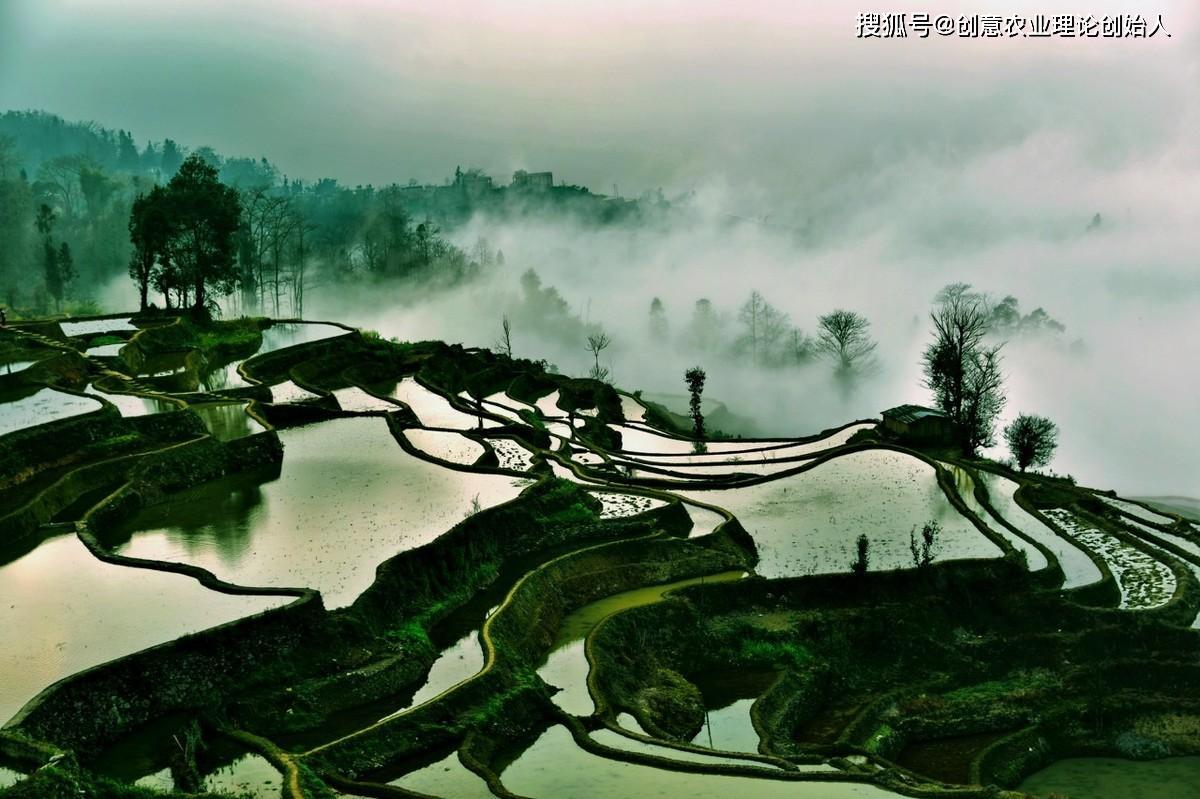 创意农业头条推荐丨中国创意农业美学经济发展研究报告