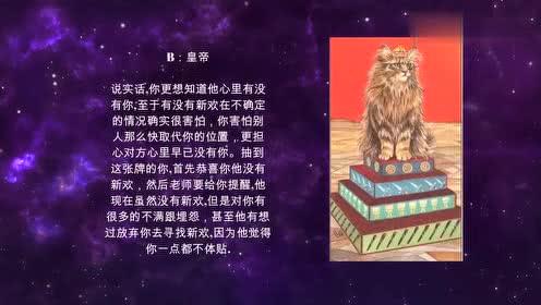 塔罗牌占卜,爱情/事业/财运/学业,塔罗占卜算命