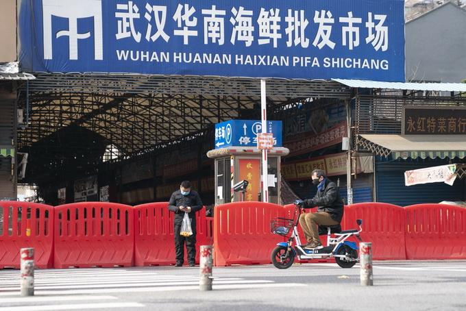 一家4口在華南海鮮市場住43天未感染,知情人講述事件始末