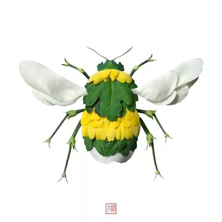 日本植物艺术家2020年最新作品,用植物拼动物,太精彩了