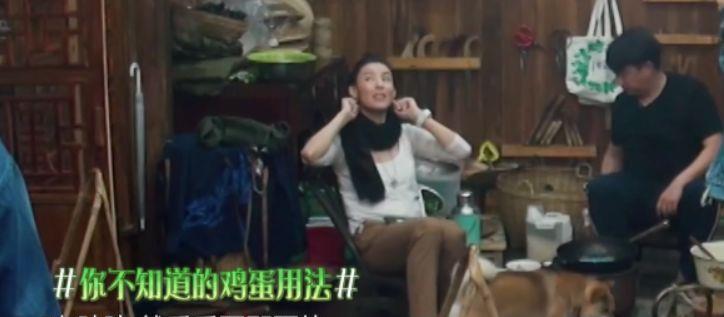 原创《向往》张柏芝大方谈三胎,产后五个月洁癖严重,自嘲一孕傻九年