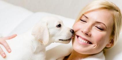 恒耀平台注册_狗狗爱你的六大表现,中三个以上,可以给狗狗加餐了!