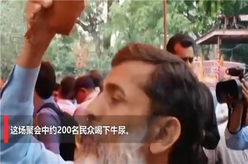 印度聚众喝牛尿 印度数百教徒喝牛尿预防新冠肺炎?