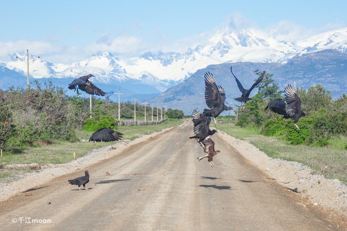巴塔哥尼亚-最美的风光在路上