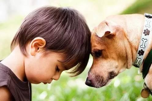 原创忍不住对孩子发脾气,事后又很后悔怎么办?如何避免情绪失控?