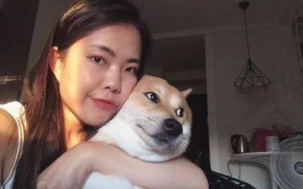 【狗狗】却被网友神补刀,瞬间就笑喷了主人发文抱怨狗狗合照不配合